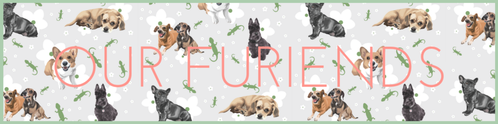 STS_OURFURIENDS_HEADER.png