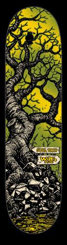 1159254672_tree-deck.jpg