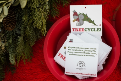 TreeCycling-5.jpg