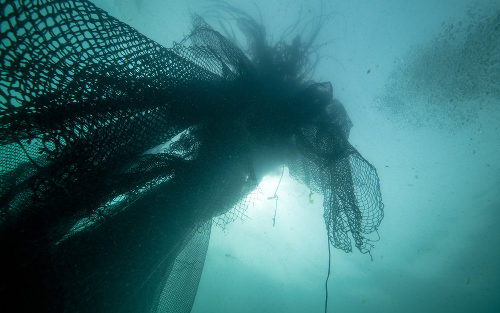 fishing nets.jpg