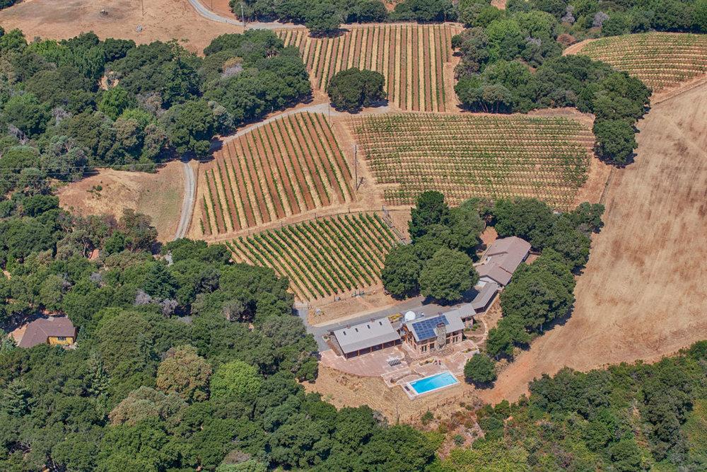 winery_011.jpg