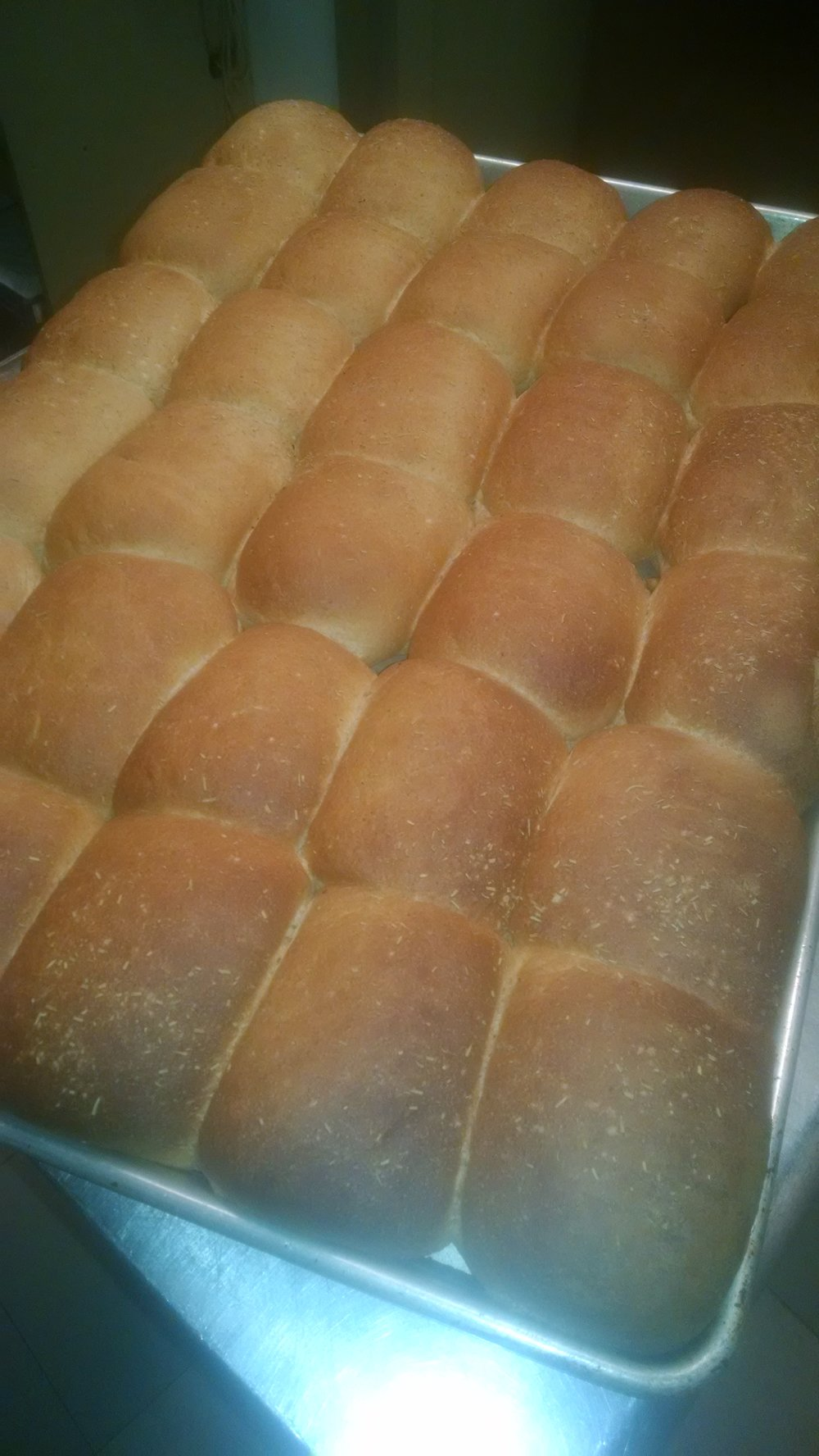 bread on sheetpan, just out of the oven.jpg