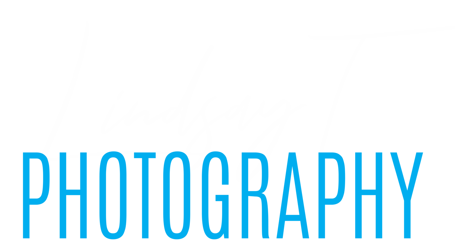 Lindsay T Photography