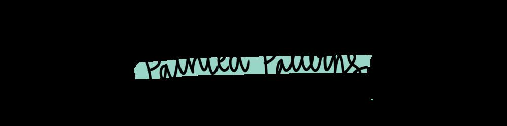 WebCover_paintedpatters.png