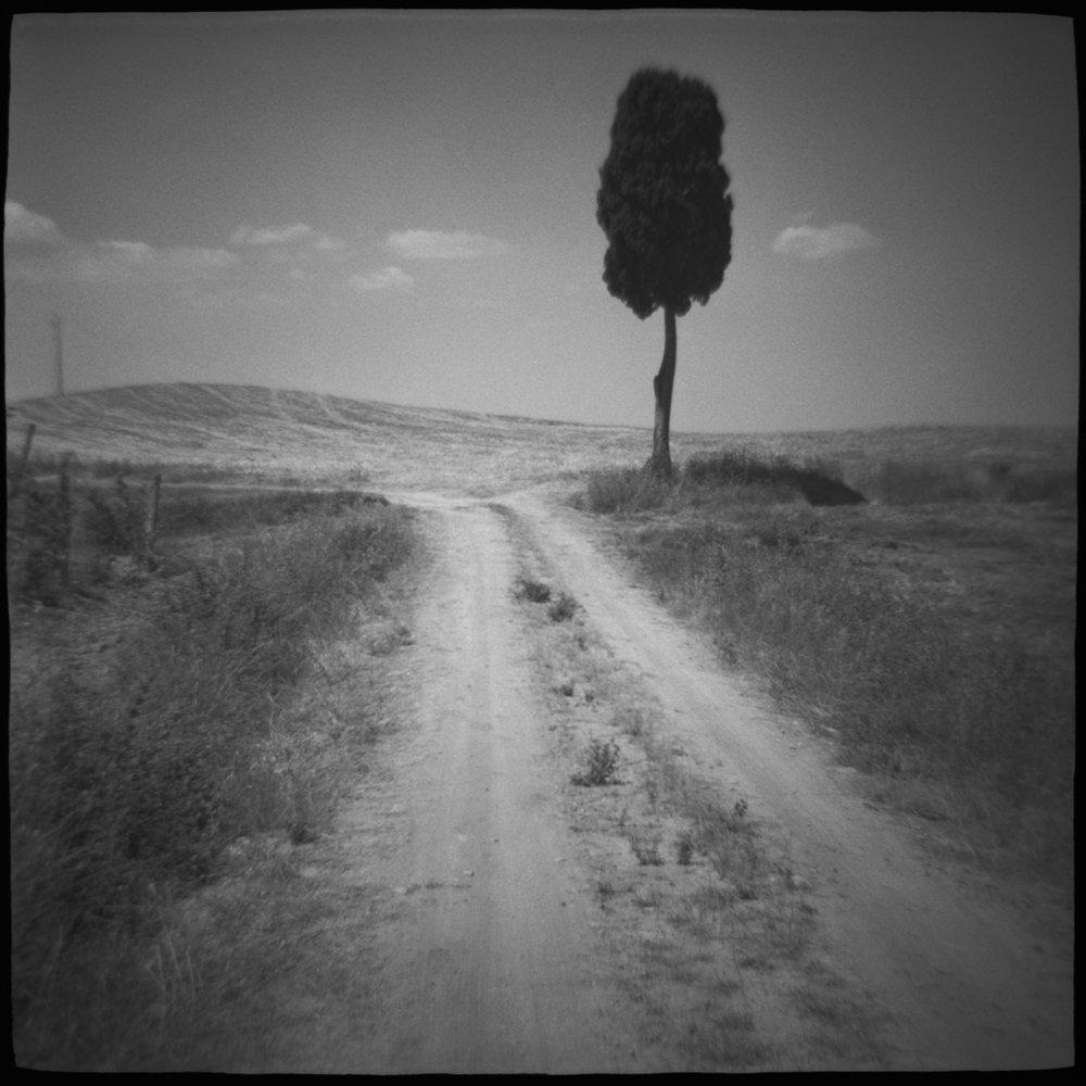 cypress road.jpg