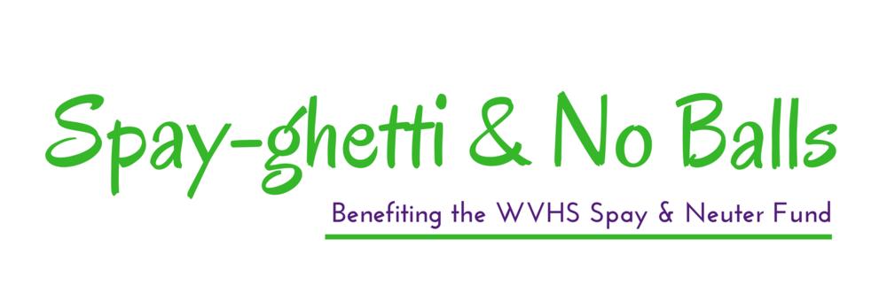 Spayghetti Site Logo.png