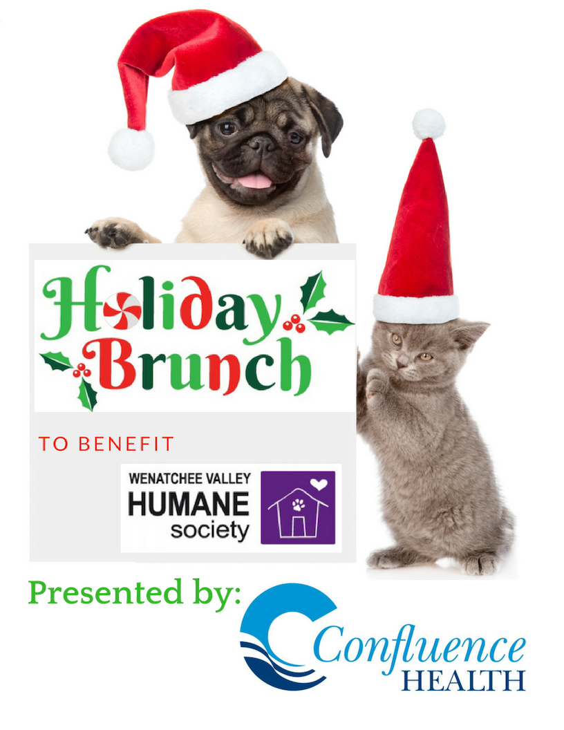 Image of: Ohio Brunch Gives Pet Lovers Chance To Support Local Animal Shelter Wenatchee Valley Humane Society Brunch Gives Pet Lovers Chance To Support Local Animal Shelter