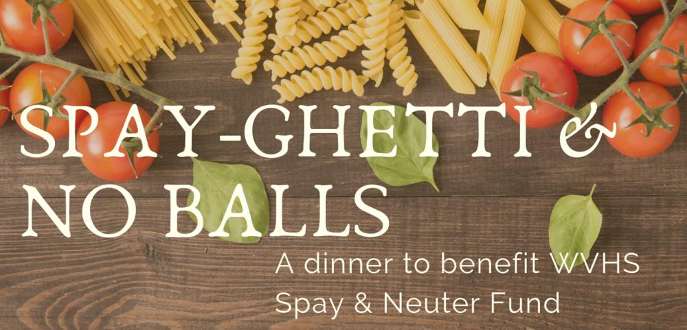 spayghetti 2019 web banner.png