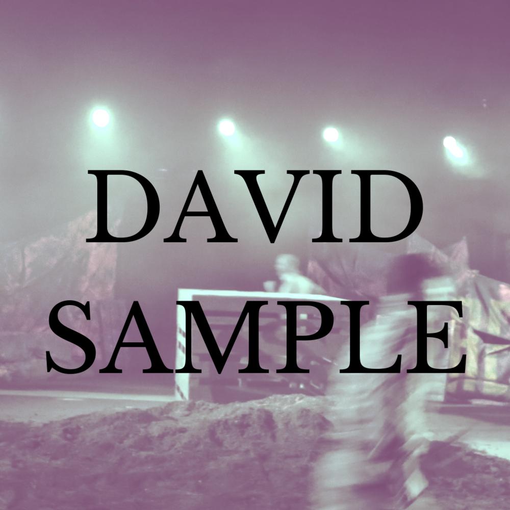 David sample.png
