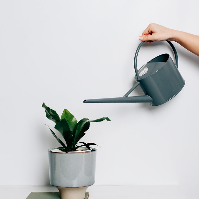Watering Cans - Fact: Plants sweat just like us, and just like us they need the occasional good drink. i say we get watering in style.