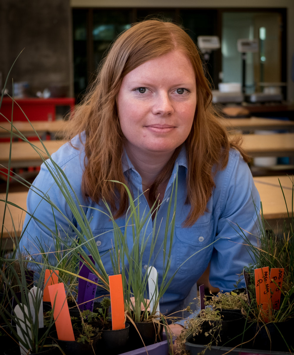 Pollution Specialist Dr. Susan Wilson