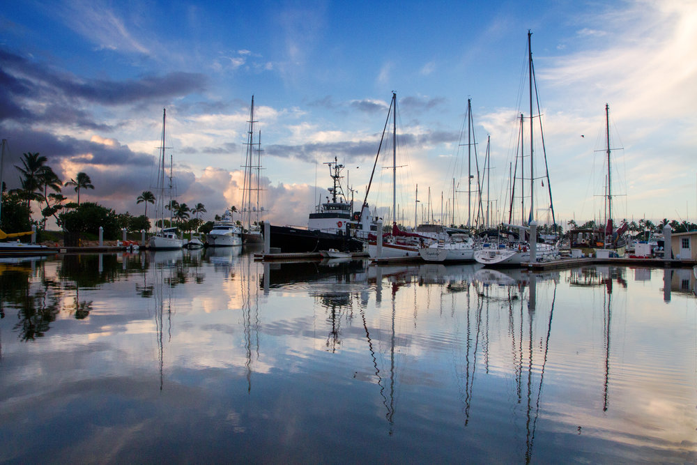 Dockside Peace.jpg