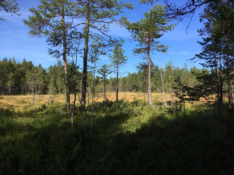 vardkallberget-4.jpg