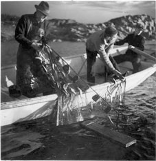 Fishermen fishing on a skötbåt