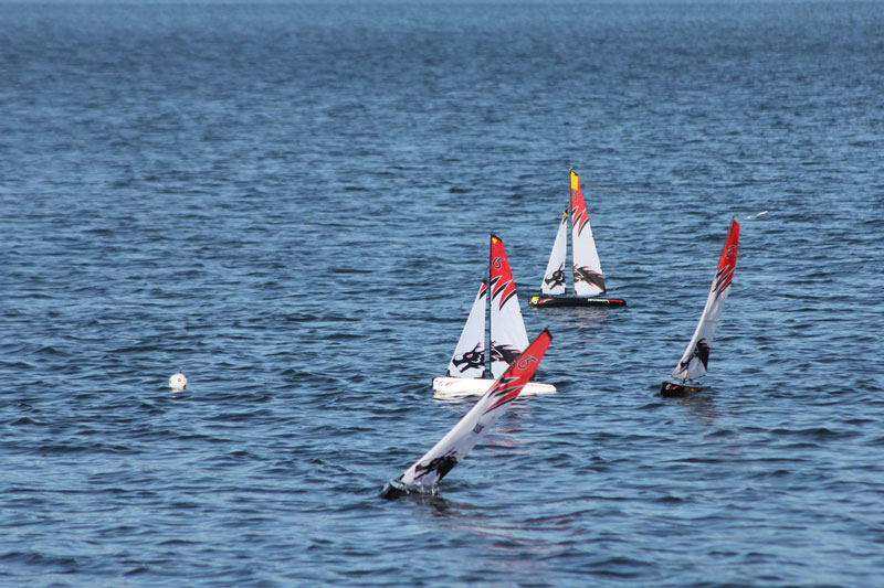 steering-radio-sailboats-during-a-regatta.jpg