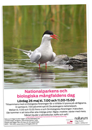 Naturum Höga Kusten - playbill Nationalparkens Dag 2018