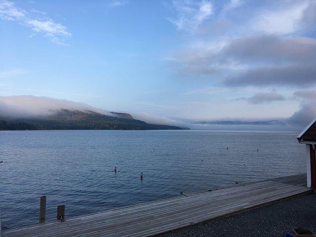 Dockstafjärden and Vårdkallberget #fromthepier #fog #dimma #seaview #outdoors #magicdocksta #HögaKusten #HighCoast #Docksta #marina #DockstaHavet #gästhamn #safemooring #sailingpassion #segling #seglar #sailing #boating #cruising #explore #båtliv #familysailing #happysailor #sailingschool #radiosailing #🇸🇪 🌬 __/)___ #HighCoastSailor 👋