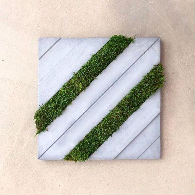 Gama w Green 🌿👆#tonkproject #concretetiles #concrete #tonk #madeinturkey #canadianinteriors