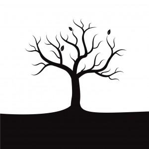 dead-tree_ml-300x300-1-1.jpg