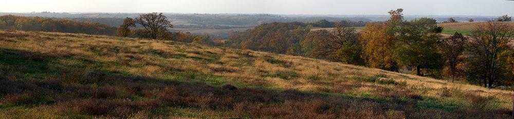 Meadow, Fall near Preston
