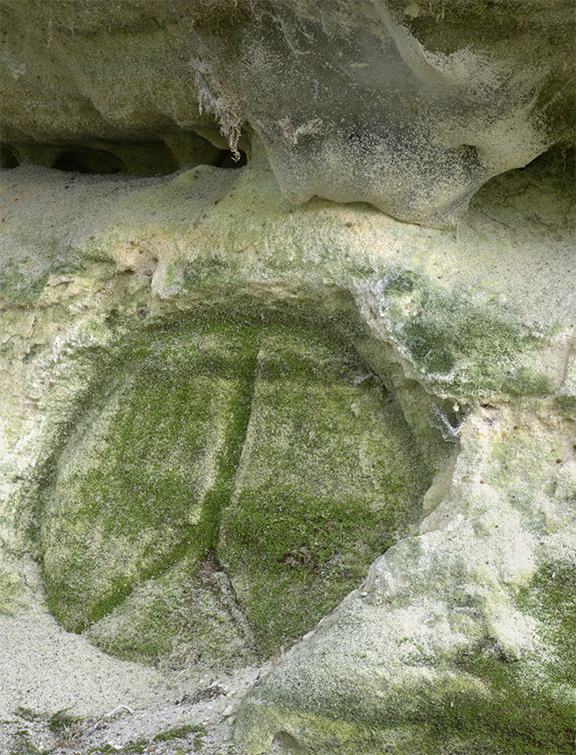 Modern Sandstone Petroglyph - Detail