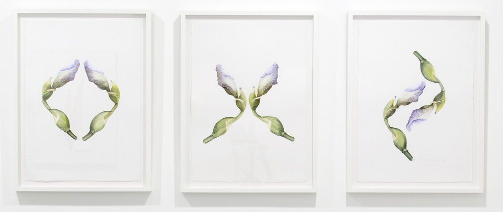 Triptych - Flirtation, Altercation and Reconciliation, 2013