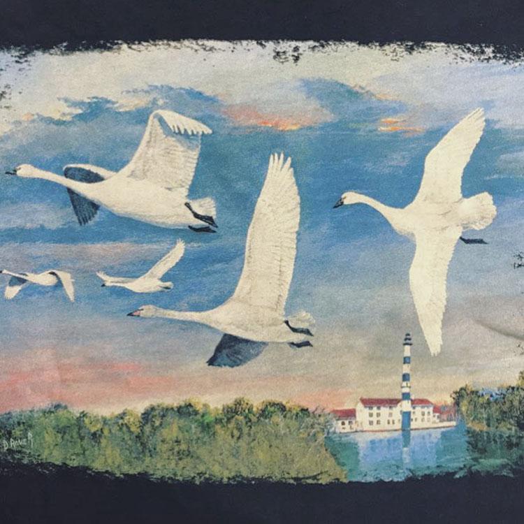 Swan Days t-shirt (back)