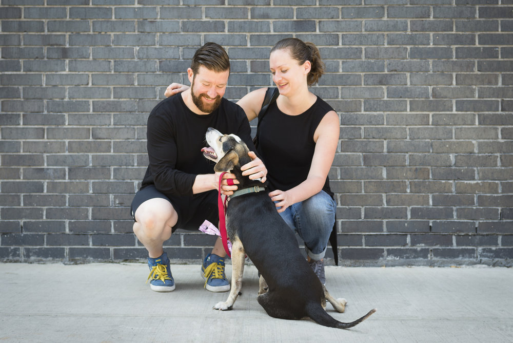 I live in Brooklyn, New York with my wife Christina, Golda the Iron Dog, and James, the newest edition to our family. - A life-long athlete, I enjoy sports such as swimming, weightlifting and basketball.