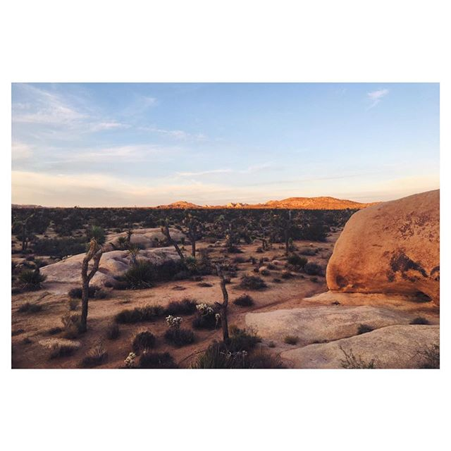 Quality time in the desert with my best bud @sean_gunnell #madeforadventure
