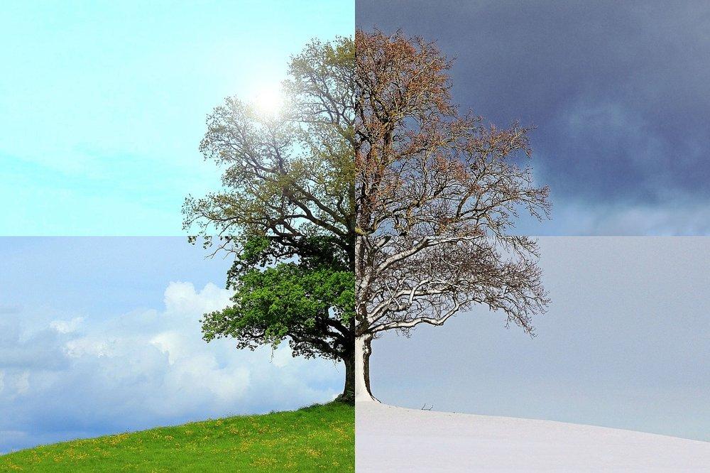 seasons-of-the-year-1127760_1280.jpg