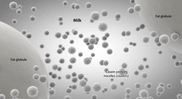 Nanoparticles in homogenized milk. Source:  Foodhighs