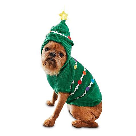 Time for Joy O' Christmas Tree Dog Hoodie, $10