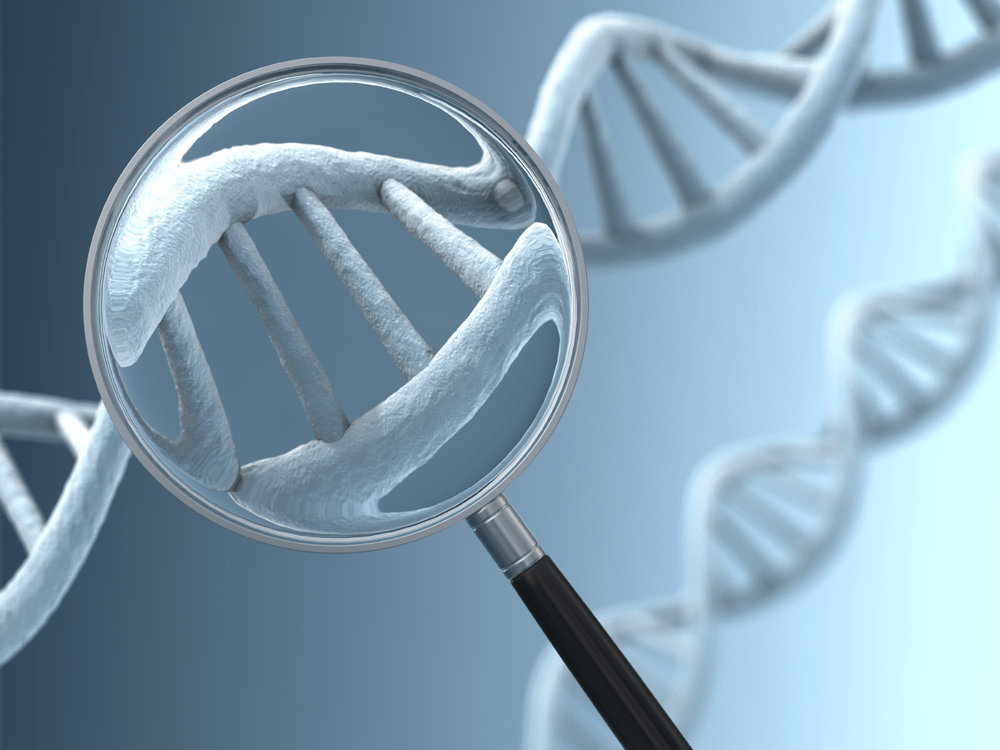 Our Genetic Profile Tests assess Aging Factors, Weight Loss Factors, Nutrient Factors and Athletic Performance Factors.