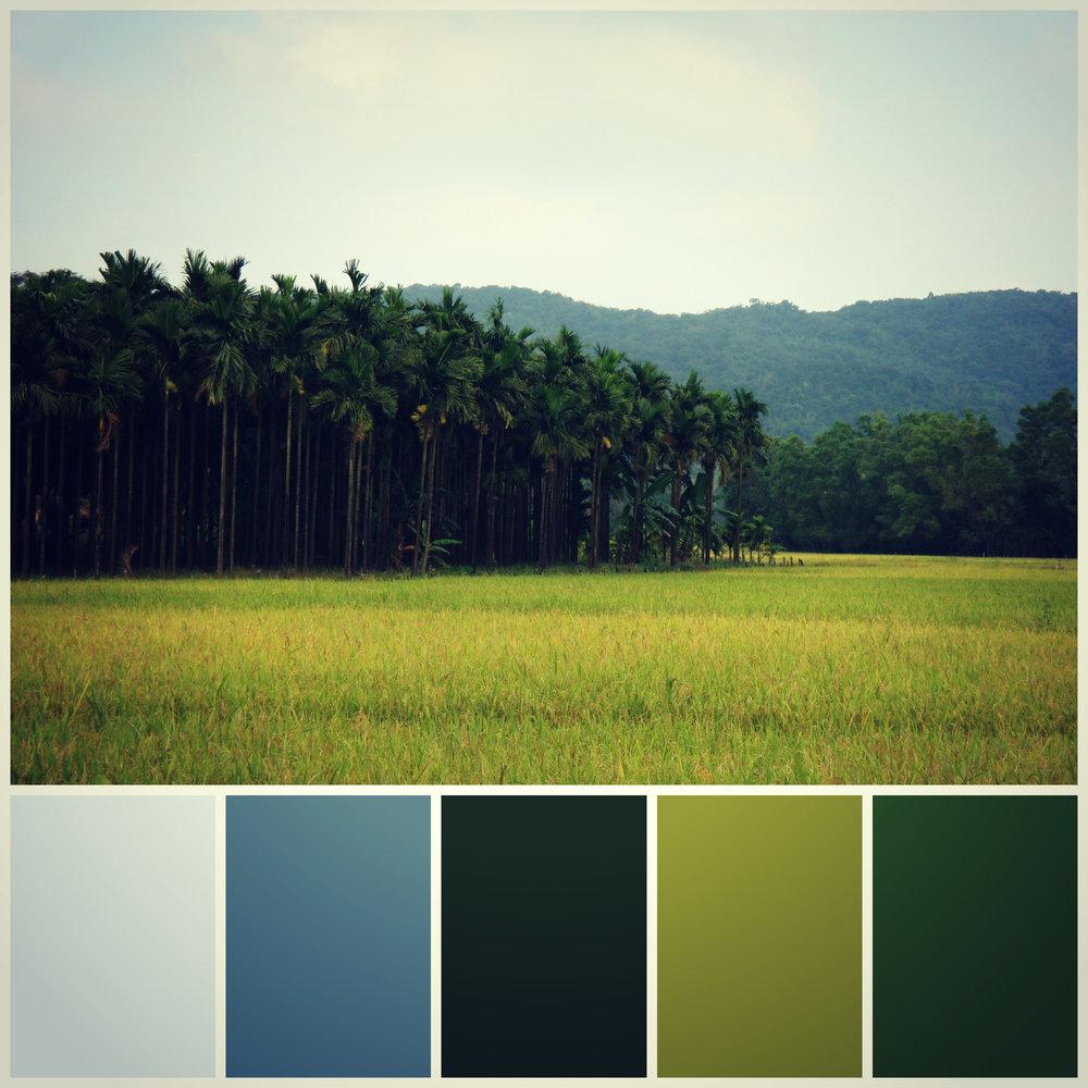 Colour Board 3.jpg
