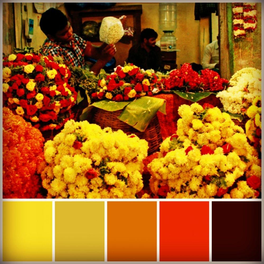Colour Board 5.jpg