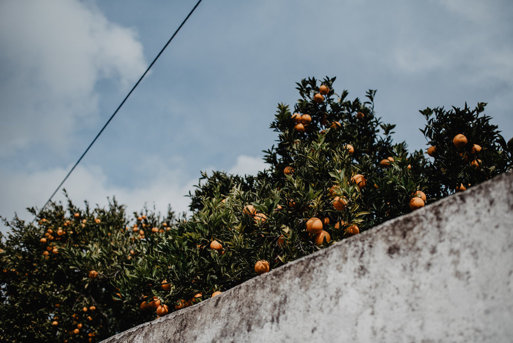 Portugal-Miss Freckles Photography-53.jpg