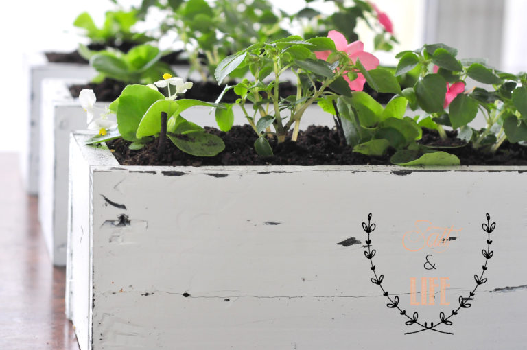 Salt and Life - DIY Pallet Planter Boxes