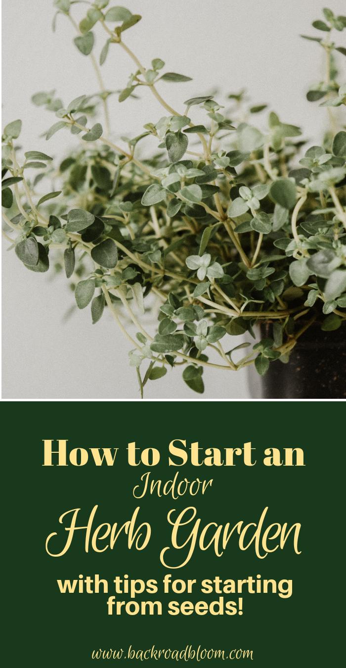 How to Start an Indoor Herb Garden.png