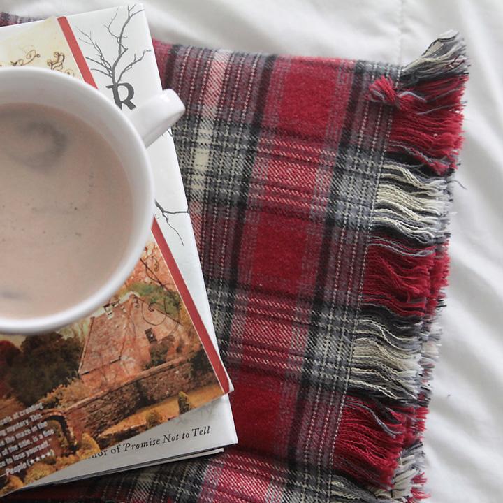 DIY Fringed Flannel Throw via It's Always Autumn