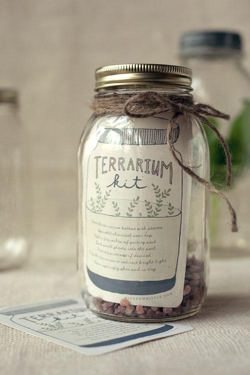 Terrarium Kit via Wit and Whistle