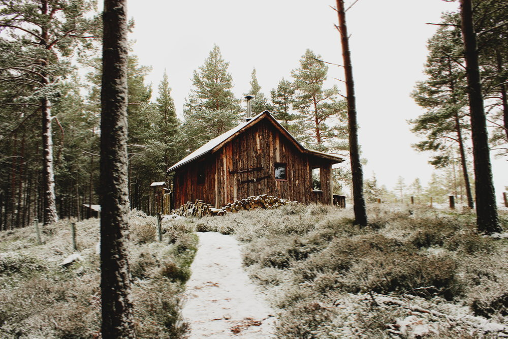 The Curiosity Collection: Cabin Life in Scotland at The Lazy Duck