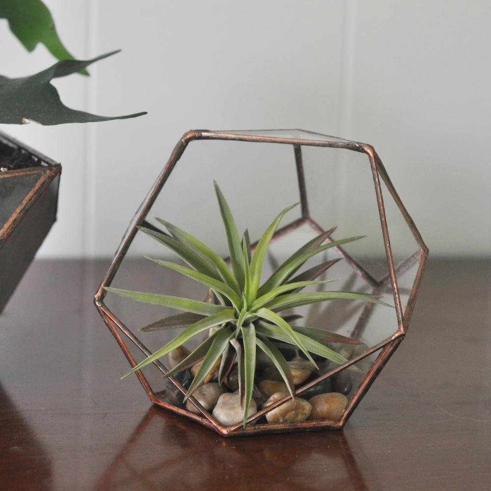 mapart.me:   ABJ glassworks - planter