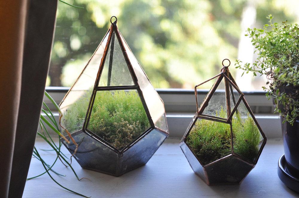 mapart.me:   ABJ glassworks - Teardrop Terrarium Kit
