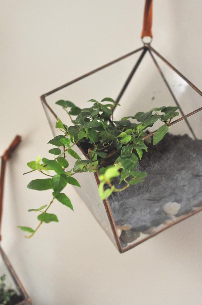 mapart.me:   ABJ glassworks - terrarium kit