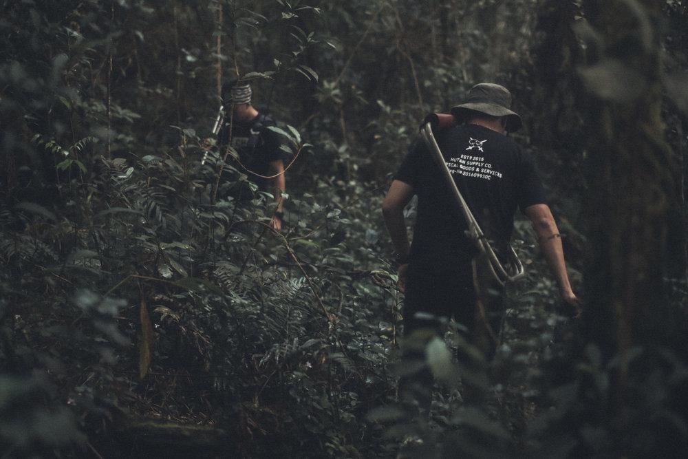 You can follow Hutan Tropical on Instagram  @hutantropical   Photos and Info by  Hutan Tropical