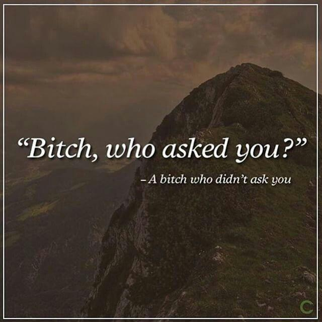 bitch-who-asked-you-a-bitch-who-didnt-ask-you-quote-1.jpg