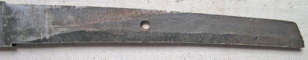 DSCN1362.JPG