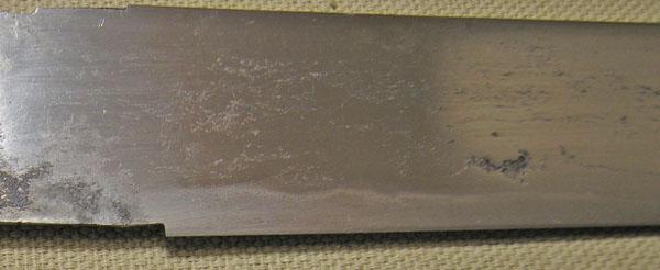 DSCN5413.JPG