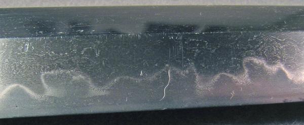 DSCN5049.JPG