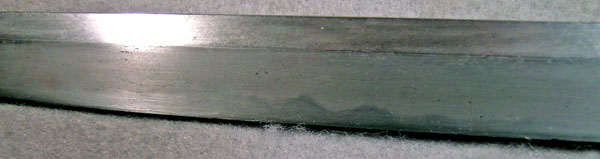 DSCN5659.JPG